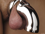 When combined with the chastity cage rings, you have a way to keep your man&#039;s cock locked in tight and secure.