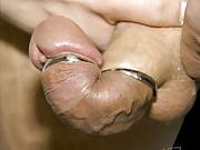 the cock snake penis restraint